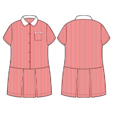 Pinstripe Dress (Summer)
